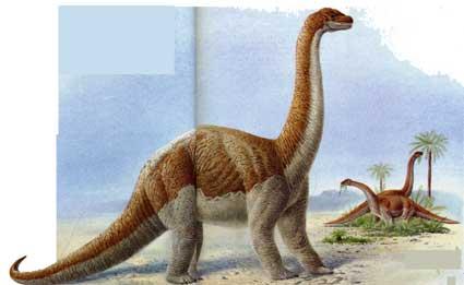 Картинки по запросу Барапазавр